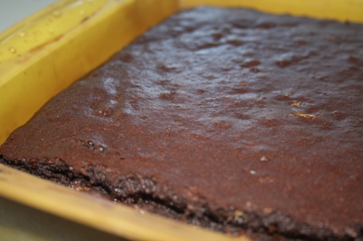 Blog - brownie in silicone tin