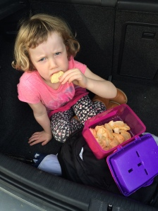 Blog - sulk in the back of the car