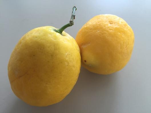 Blog Lemon Meringue Pie 1