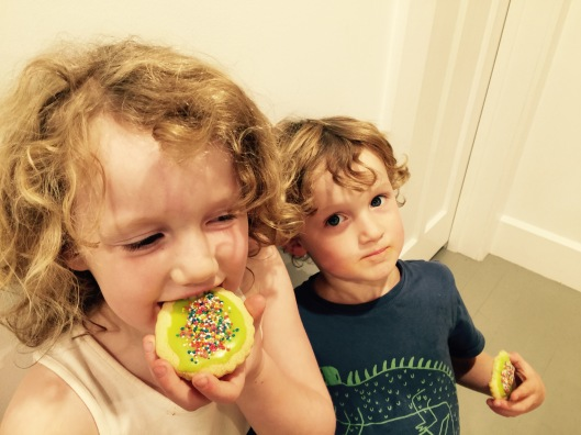Sprinkle Biscuits 5