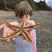 j-with-starfish